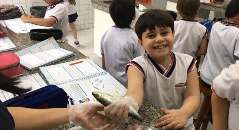 2° ano e os animais - Laboratório e Sala PopUp